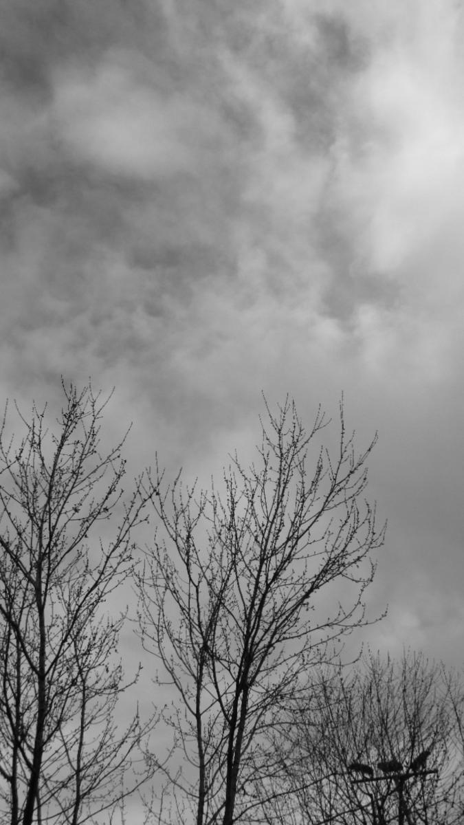 Bianco cielo